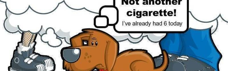 Protect your Pets from Second Hand Smoke